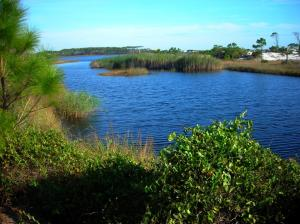 Lake at Grayton Beach Park