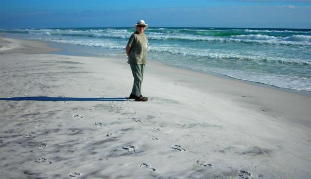 Topsail Park Beach