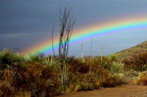 Rare Desert Rainbow Big Bend, Texas