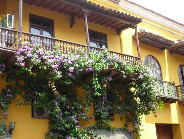 Flowers everywhere in Cartagena, Columbia